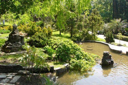 Парк «Южные Культуры» в Сочи