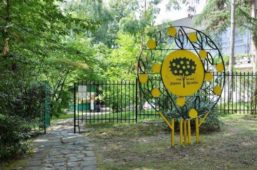Сад-музей «Дерево Дружбы» в Сочи